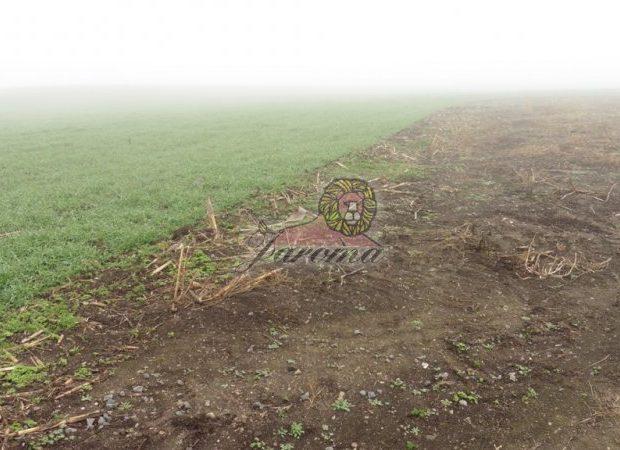 Pozemok v Malom Čepčíne