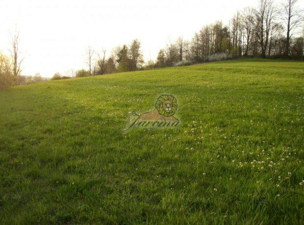 Pozemky v Brezne